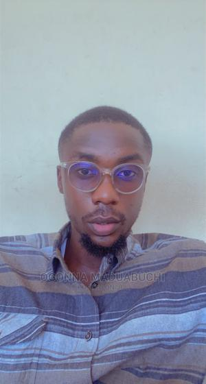 Barrister, Freelance Writer   Other CVs for sale in Abuja (FCT) State, Wuse 2