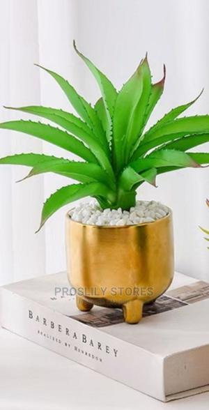 Round Gold Pot Plant With Legs . Pot Is Ceramic All Inclu . | Garden for sale in Lagos State, Ikeja