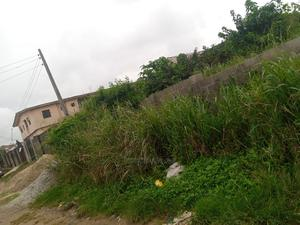 Half Plot of Land for Sale Serious Buyer Call Only | Land & Plots For Sale for sale in Ikotun/Igando, Igando / Ikotun/Igando