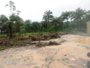 Land for Sale | Land & Plots For Sale for sale in Delta State, Okpe