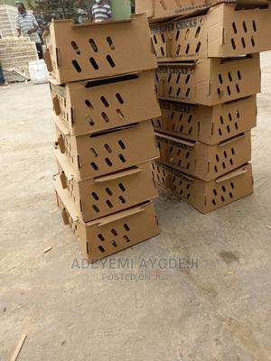 Day Old Chicks And Point Of Lay For Sale   Livestock & Poultry for sale in Oyo State, Oluyole