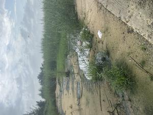 C of O Land in Ibeju Lekki | Land & Plots For Sale for sale in Lagos State, Ibeju