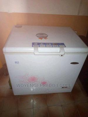 Thermocool Freezer | Kitchen Appliances for sale in Bayelsa State, Yenagoa