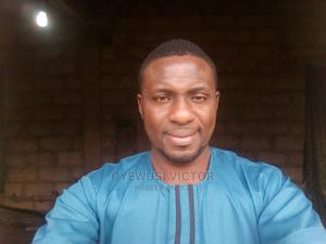 My Curriculum Vitae | Farming & Veterinary CVs for sale in Osun State, Aiyedire