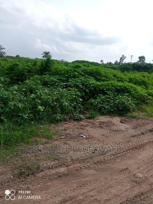 A Plot of Land Along Adedokun Rd Off Iwo Road Lagun   Land & Plots For Sale for sale in Oyo State, Lagelu