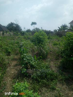 Family Receipt and Survey Plan   Land & Plots For Sale for sale in Ondo State, Akure