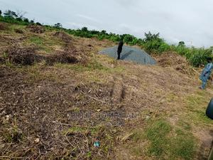 Acres of Land With Registered Survey and Deed of Assignment   Land & Plots For Sale for sale in Ibadan, Akala Express