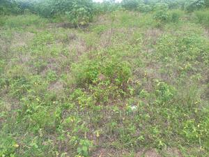 260acres of Land With C of O at Onikanga Along Eruwa Ido L/G   Land & Plots For Sale for sale in Oyo State, Eruwa