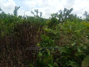 1000 Acres of Land at Eripa, Ibadan Very Close to Ijebu.   Land & Plots For Sale for sale in Oyo State, Ibadan