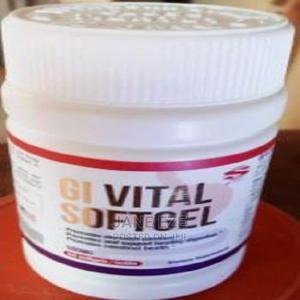 GI Vital Softgel   Vitamins & Supplements for sale in Lagos State, Amuwo-Odofin
