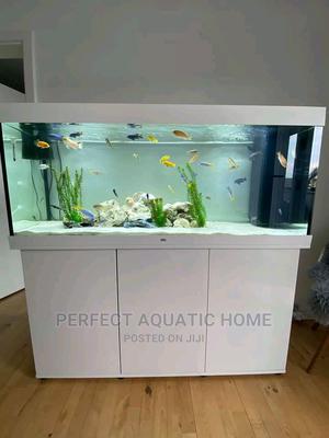 Aquarium Fish Tank 5ft*2ft14 | Pet's Accessories for sale in Lagos State, Surulere
