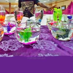 Bowl Up Fully Set | Pet's Accessories for sale in Lagos State, Surulere