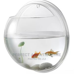 Hanging Fish Bowl   Fish for sale in Lagos State, Surulere