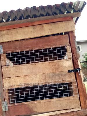 Durable Dog Cage for Sale   Pet's Accessories for sale in Oyo State, Ibadan