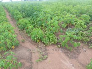 450k for 6plot of Land and Make 25% Profit Gain Every Year.   Land & Plots For Sale for sale in Oyo State, Iseyin
