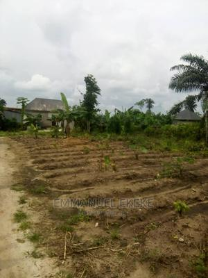 Buy and Build Two Plots of Lands at Rukpokwu | Land & Plots For Sale for sale in Rivers State, Obio-Akpor