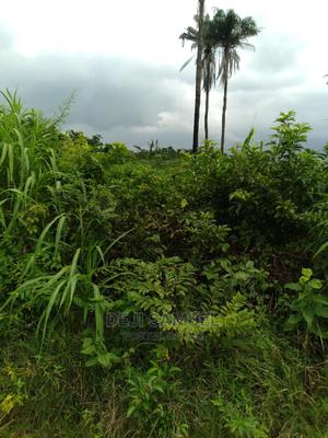 Land At Mowe Ofada( Reg Survey)   Land & Plots For Sale for sale in Ogun State, Sagamu