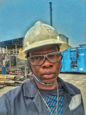 Oil and Gas Engineer | Engineering & Architecture CVs for sale in Lagos State, Lekki