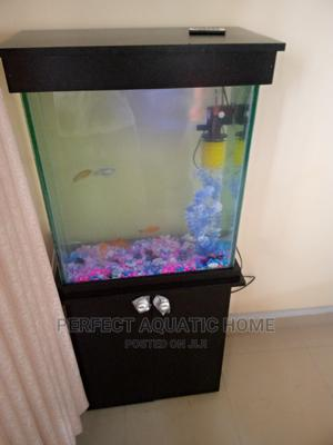 Aquarium Fish Tank 22*24*8 | Pet's Accessories for sale in Lagos State, Surulere