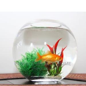 Extra Large Fish Bowl Kit   Pet's Accessories for sale in Lagos State, Surulere