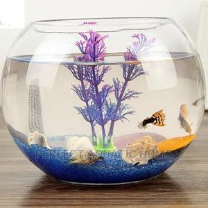 Fish Bowl 7 Liters Full Kit   Pet's Accessories for sale in Lagos State, Surulere