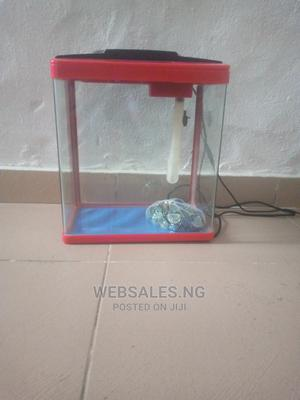 15litrs Imported Aquarium With Fishes | Fish for sale in Lagos State, Surulere