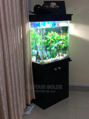 Room Aquarium | Fish for sale in Lagos State, Surulere