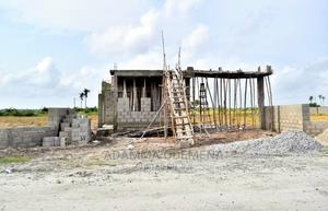Dry Lands With C of O in Ibeju Lekki   Land & Plots For Sale for sale in Ibeju, Eleko