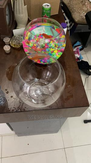 Full Kit Fish Bowl With Fishes   Fish for sale in Lagos State, Surulere