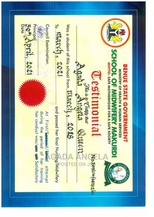 Healthcare Nursing CV | Healthcare & Nursing CVs for sale in Lagos State, Agboyi/Ketu
