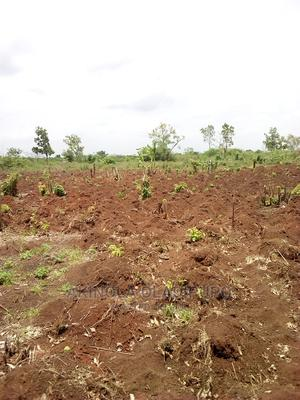 Fertile Farm Land   Land & Plots for Rent for sale in Ogun State, Ewekoro