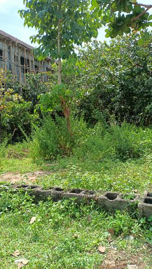 Stragically Located 870sqm   Land & Plots For Sale for sale in Abuja (FCT) State, Jahi