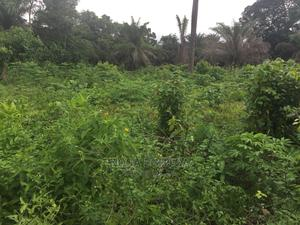 Land Measuring 50 by 100 for Sale | Land & Plots For Sale for sale in Edo State, Benin City