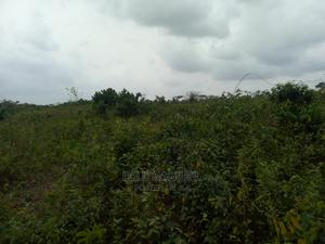 Land at Atan (Registered Survey Deed of Assignment)   Land & Plots For Sale for sale in Ogun State, Ado-Odo/Ota