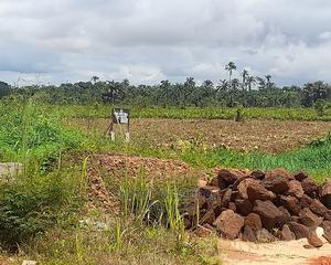 Hottest Deal In Oba | Land & Plots For Sale for sale in Anambra State, Idemili