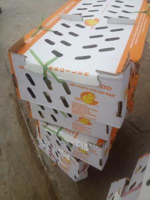 Best Day Old Broilers   Livestock & Poultry for sale in Enugu State, Nsukka