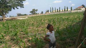 1000sqm Land in Dugbana One Man Village 33kv High Tension   Land & Plots For Sale for sale in Nasarawa State, Karu-Nasarawa