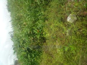 5 Acres of Land for Sale at Abuleado Festac Extension | Land & Plots For Sale for sale in Amuwo-Odofin, Abule Ado
