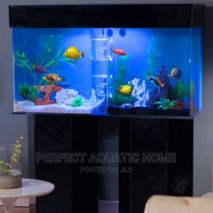 Aquarium With Amazing Fishes | Pet's Accessories for sale in Lagos State, Surulere
