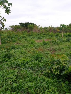 Acres and Plots for Sale   Land & Plots For Sale for sale in Oyo State, Ido