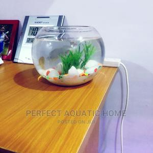 Fish Bowl Medium Size | Pet's Accessories for sale in Lagos State, Surulere