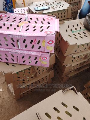 Quality and Hygienic Day Old Chicks.   Livestock & Poultry for sale in Oyo State, Oluyole