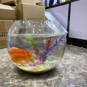 Lovely Fish Bowl Aquarium | Home Accessories for sale in Lagos State, Lagos Island (Eko)