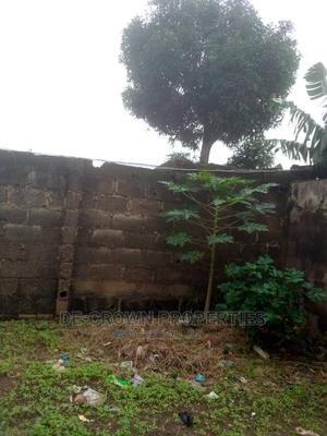 2 Plots of Land for Sale at a Very Good Location   Land & Plots For Sale for sale in Ifako-Ijaiye, Alagbado