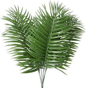 Palm Plant | Garden for sale in Lagos State, Ikorodu
