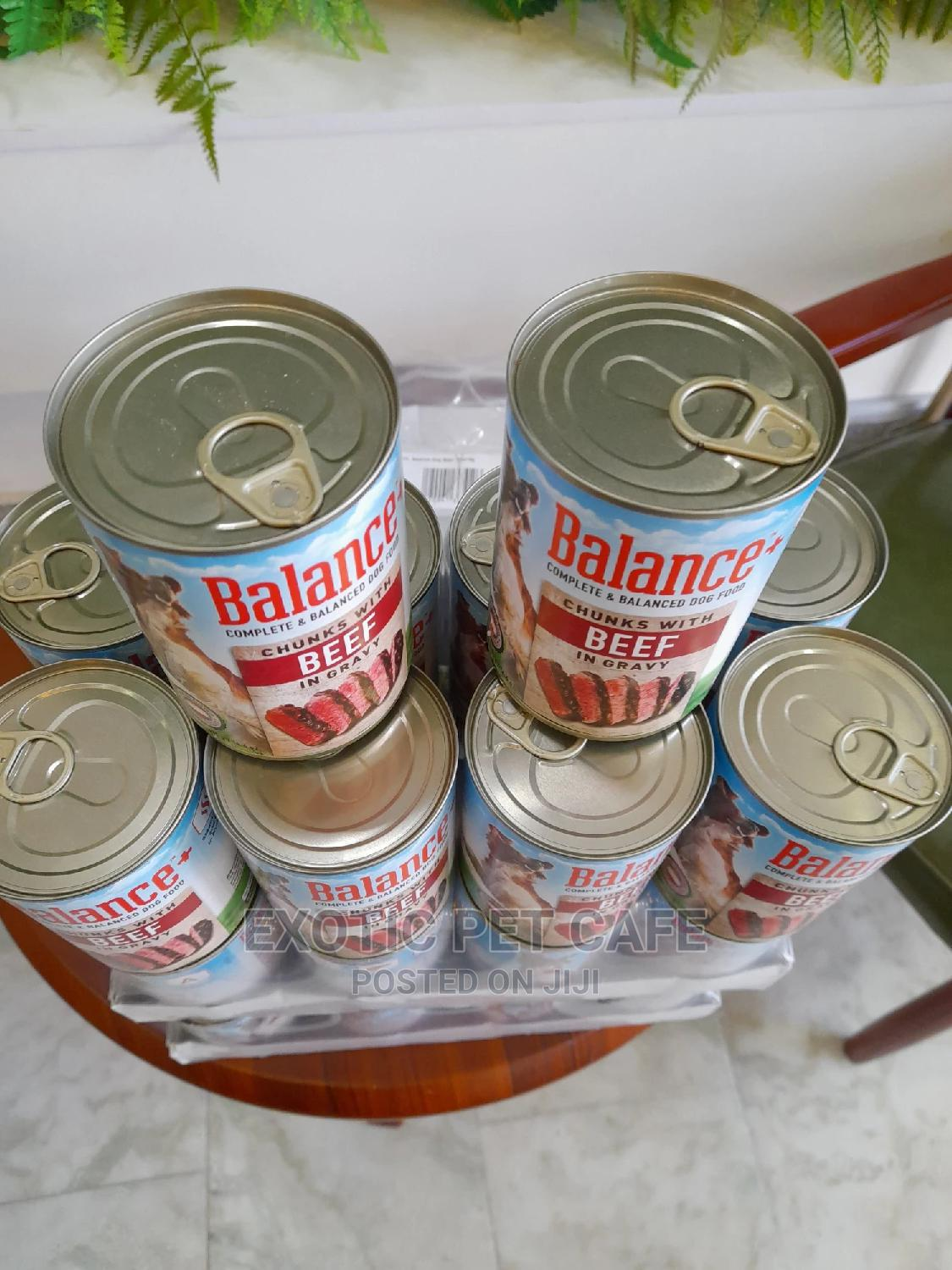 Balance Canned Dog Food X 24   Pet's Accessories for sale in Lekki, Lagos State, Nigeria