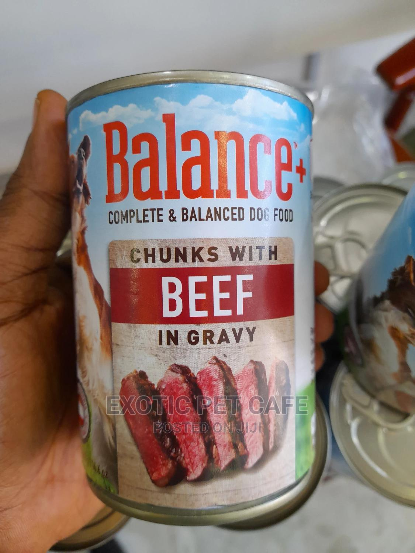 Balance Canned Dog Food X 24