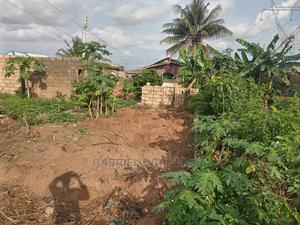 Receipt and Survey   Land & Plots For Sale for sale in Lagos State, Ajah