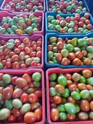 Hybrid Tomatoes | Meals & Drinks for sale in Ogun State, Obafemi-Owode