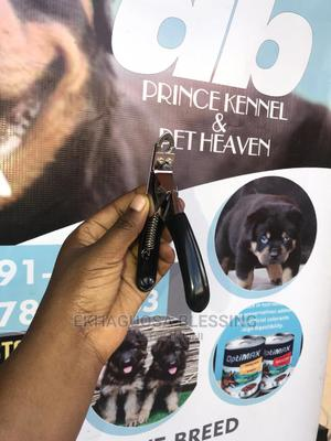 Nail Cutter | Pet's Accessories for sale in Edo State, Benin City
